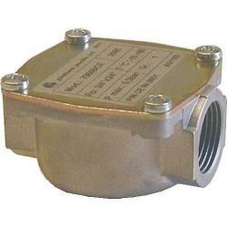 "Watts filtre a gaz mini 3/4\"""