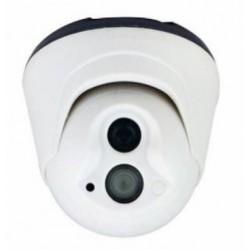 Nalitech dôme caméra infrarouge 30m NT-PE20A-CM138-ICR